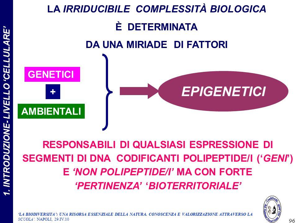EPIGENETICI LA IRRIDUCIBILE COMPLESSITÀ BIOLOGICA È DETERMINATA