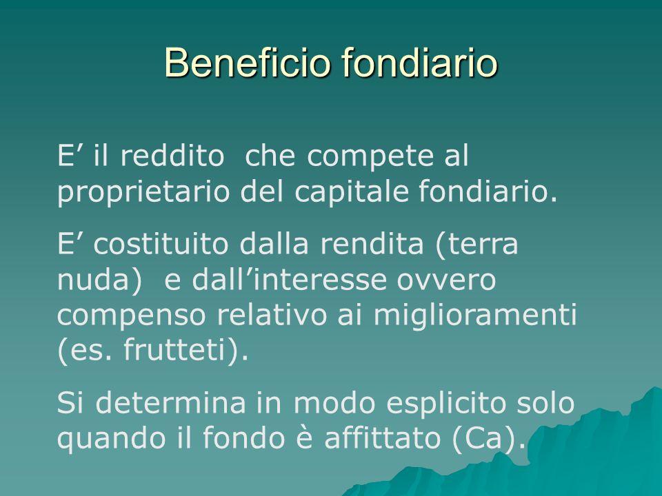 Beneficio fondiario E' il reddito che compete al proprietario del capitale fondiario.
