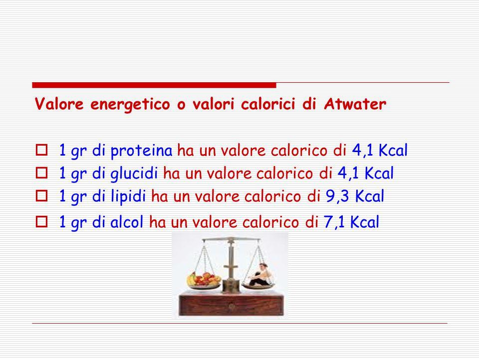 Valore energetico o valori calorici di Atwater