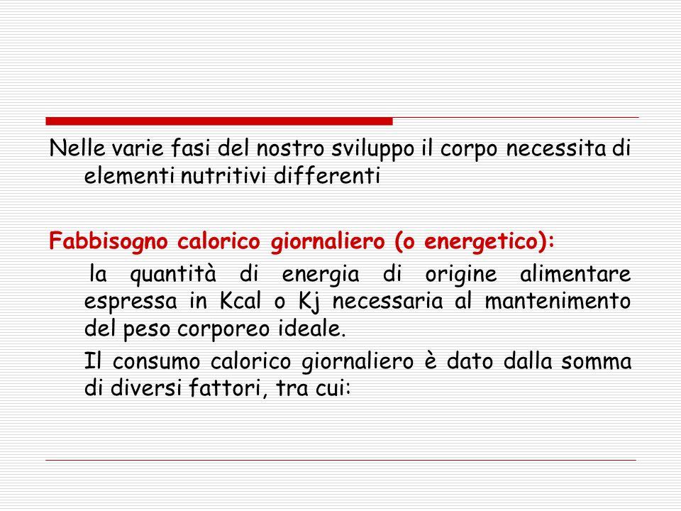 Nelle varie fasi del nostro sviluppo il corpo necessita di elementi nutritivi differenti