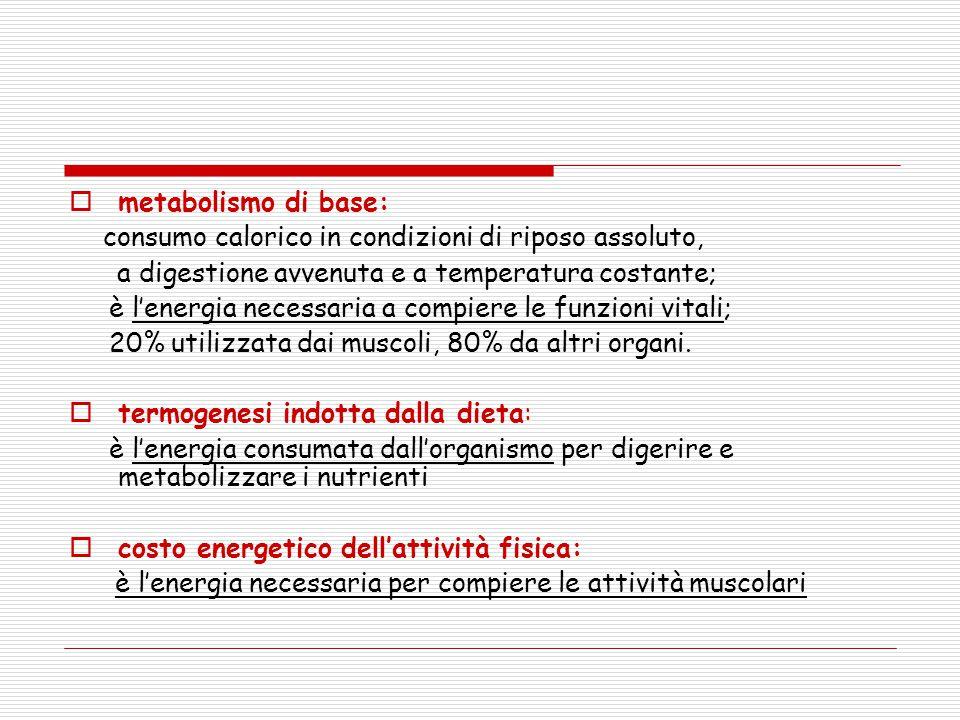 metabolismo di base: consumo calorico in condizioni di riposo assoluto, a digestione avvenuta e a temperatura costante;