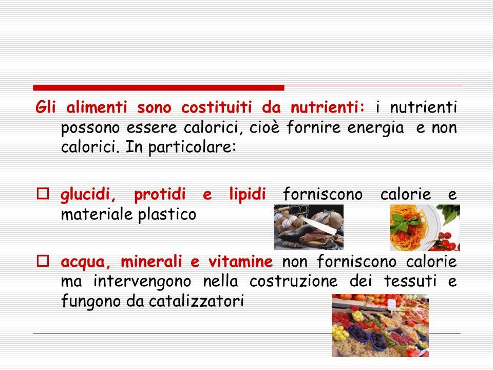 Gli alimenti sono costituiti da nutrienti: i nutrienti possono essere calorici, cioè fornire energia e non calorici. In particolare: