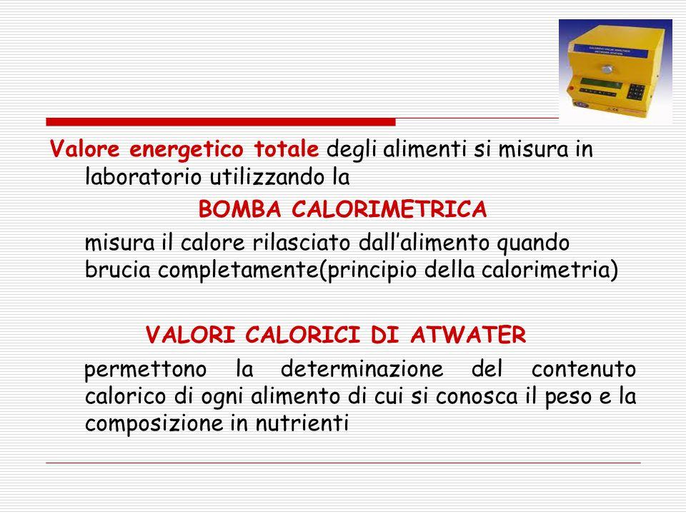 Valore energetico totale degli alimenti si misura in laboratorio utilizzando la