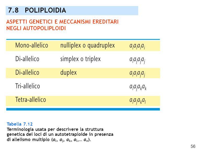 7.8 POLIPLOIDIA ASPETTI GENETICI E MECCANISMI EREDITARI NEGLI AUTOPOLIPLOIDI. Tabella 7.12. Terminologia usata per descrivere la struttura.