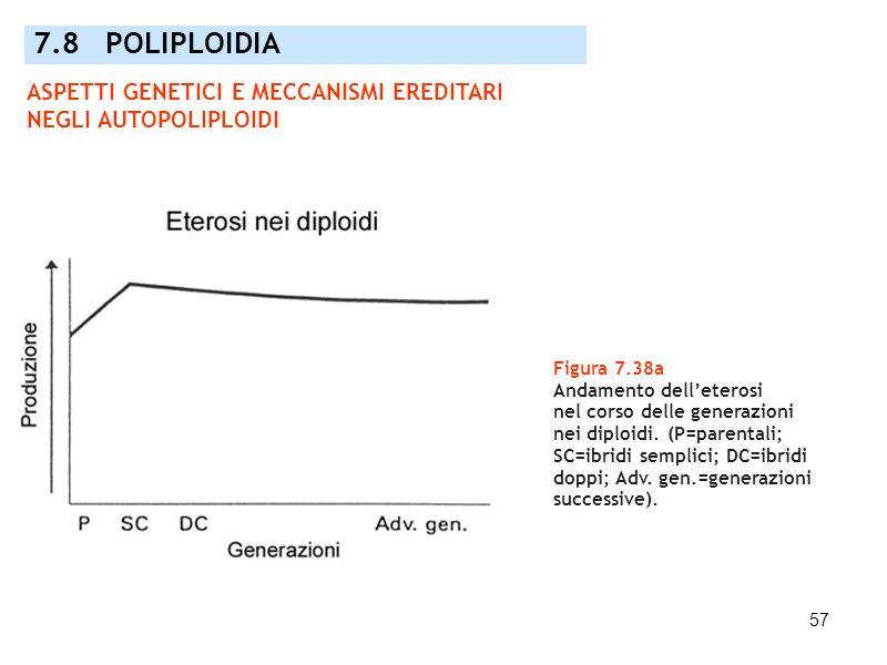 7.8 POLIPLOIDIA ASPETTI GENETICI E MECCANISMI EREDITARI NEGLI AUTOPOLIPLOIDI. Figura 7.38a. Andamento dell'eterosi.