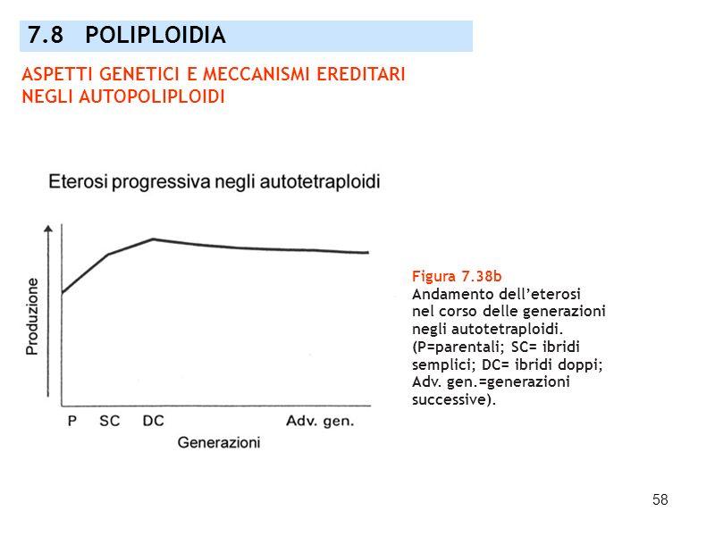 7.8 POLIPLOIDIA ASPETTI GENETICI E MECCANISMI EREDITARI NEGLI AUTOPOLIPLOIDI. Figura 7.38b. Andamento dell'eterosi.