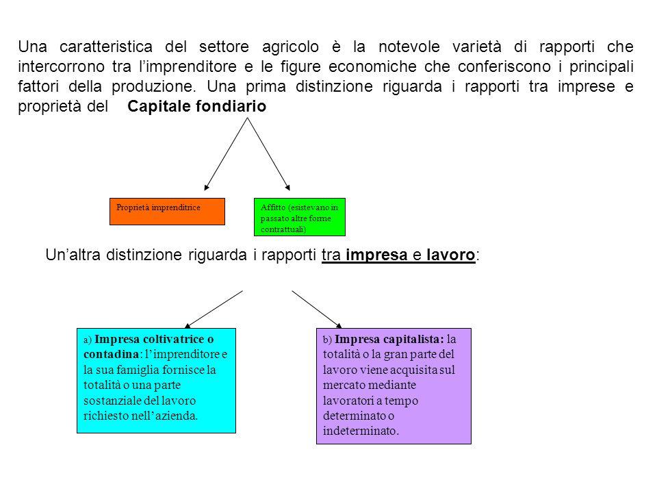 Un'altra distinzione riguarda i rapporti tra impresa e lavoro: