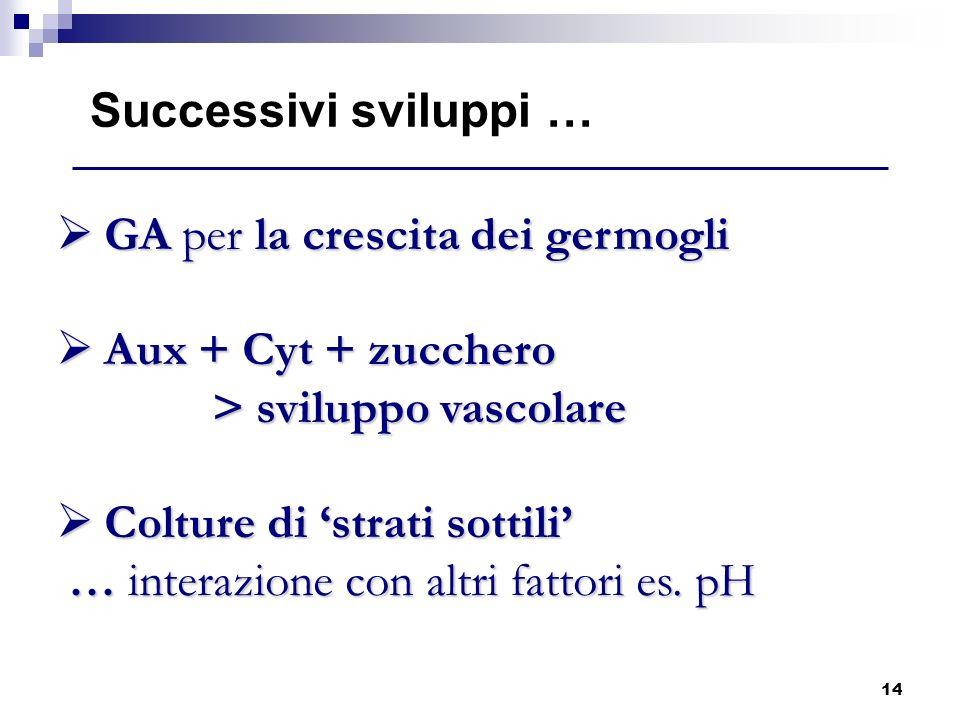 Successivi sviluppi … GA per la crescita dei germogli. Aux + Cyt + zucchero > sviluppo vascolare.