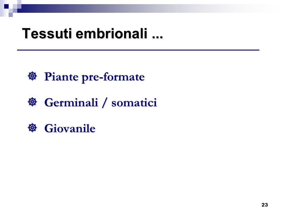 Tessuti embrionali ... Piante pre-formate Germinali / somatici