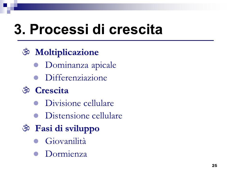 3. Processi di crescita Moltiplicazione Dominanza apicale