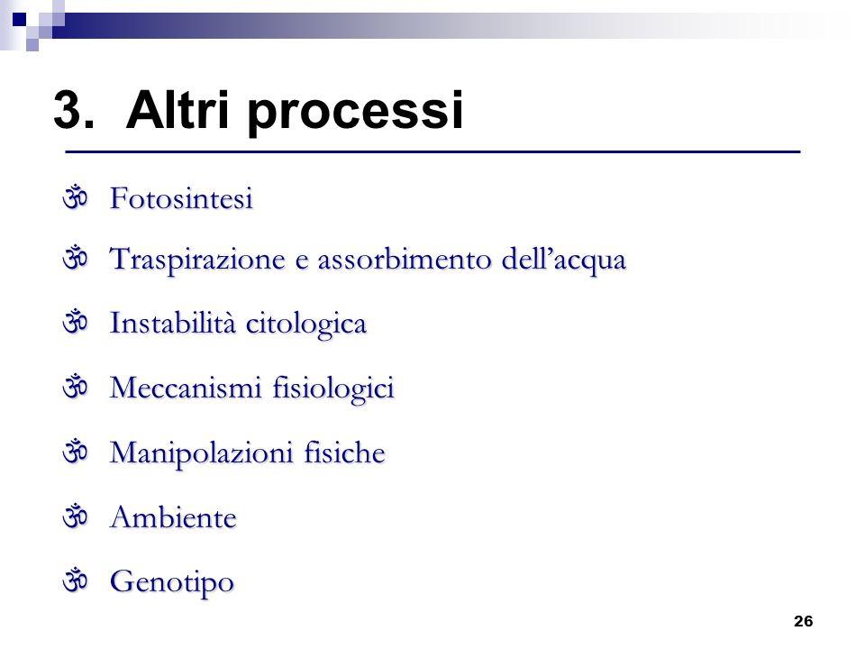 3. Altri processi Fotosintesi Traspirazione e assorbimento dell'acqua