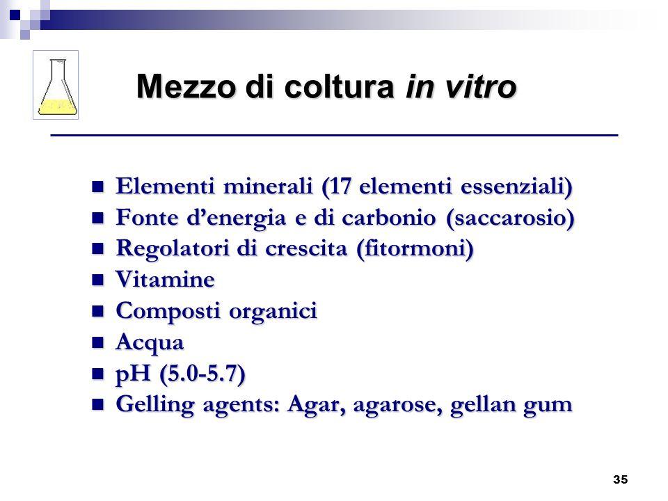 Mezzo di coltura in vitro