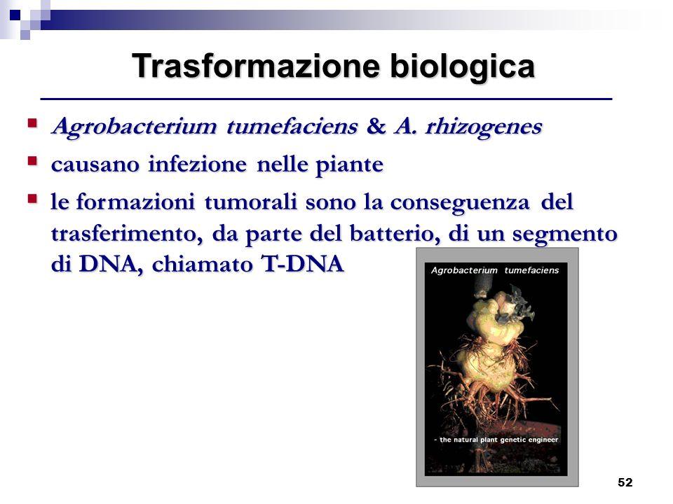 Trasformazione biologica