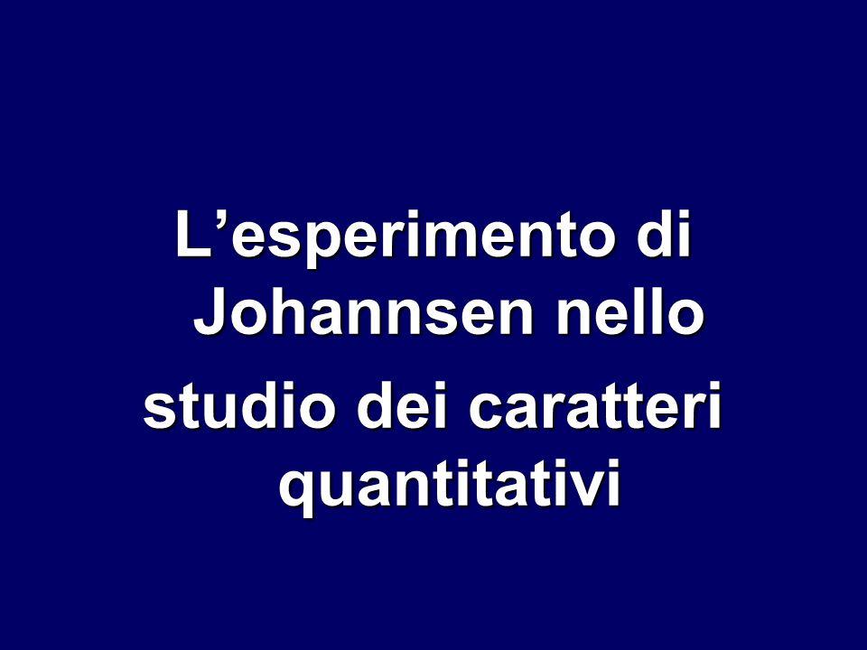 L'esperimento di Johannsen nello studio dei caratteri quantitativi