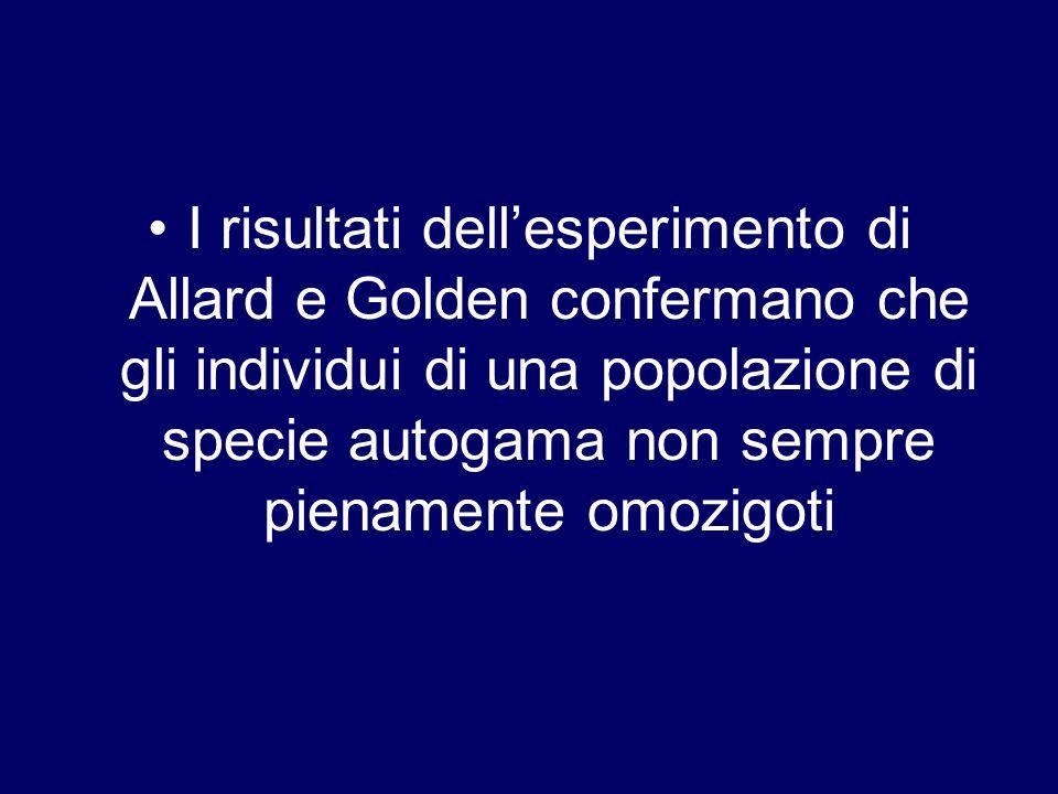 I risultati dell'esperimento di Allard e Golden confermano che gli individui di una popolazione di specie autogama non sempre pienamente omozigoti