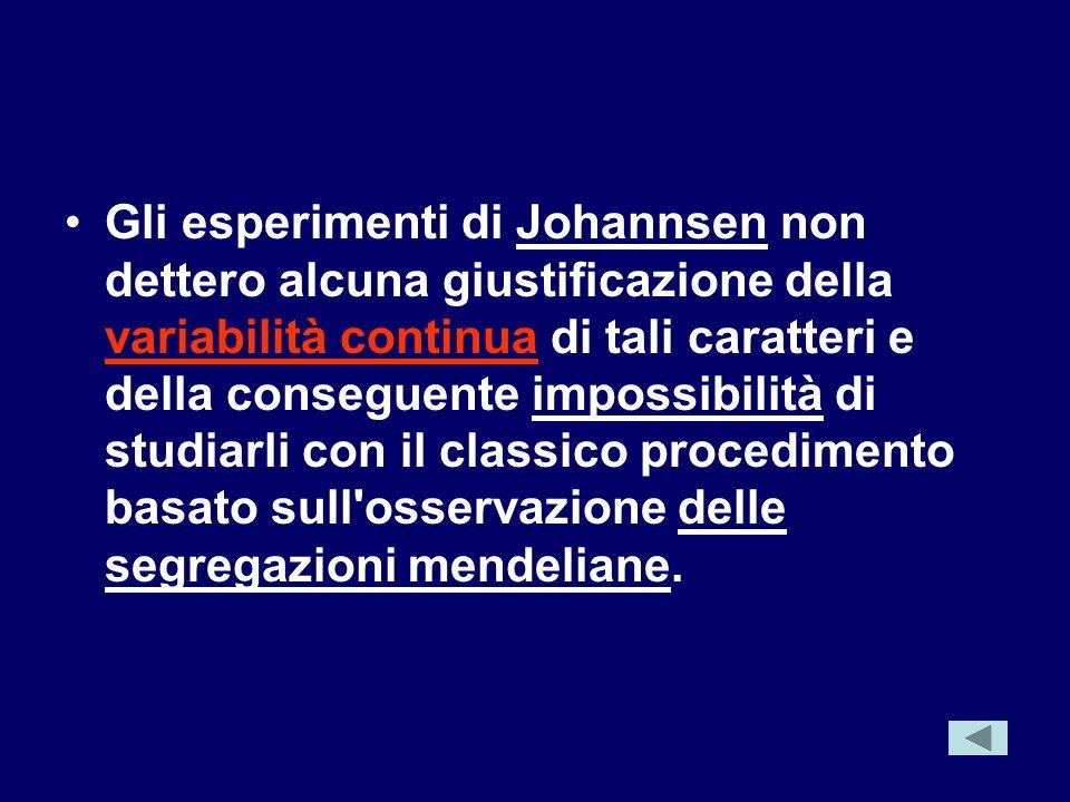 Gli esperimenti di Johannsen non dettero alcuna giustificazione della variabilità continua di tali caratteri e della conseguente impossibilità di studiarli con il classico procedimento basato sull osservazione delle segregazioni mendeliane.