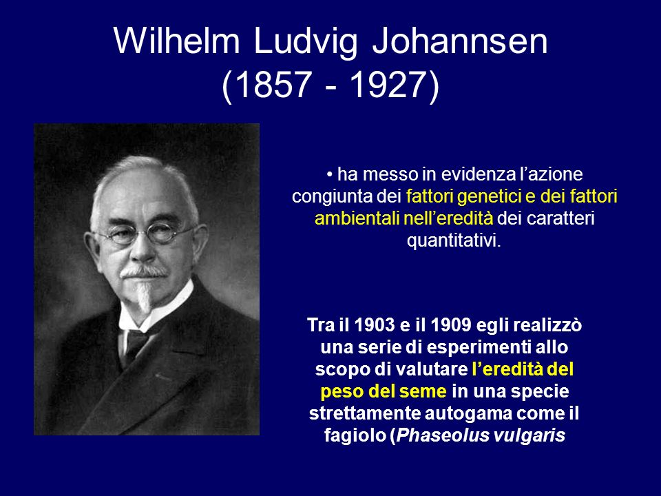 Wilhelm Ludvig Johannsen (1857 - 1927)