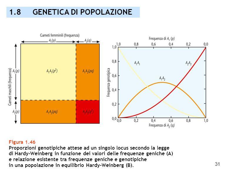 1.8 GENETICA DI POPOLAZIONE