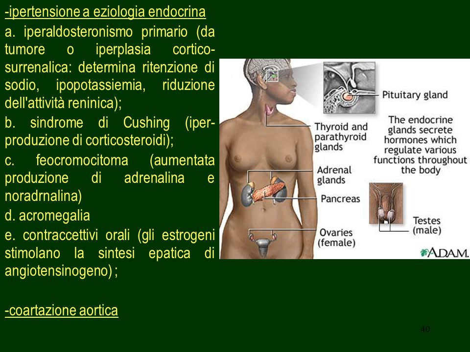 -ipertensione a eziologia endocrina