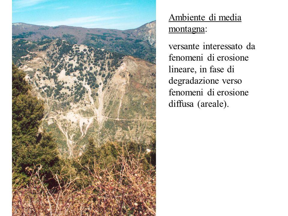 Ambiente di media montagna: