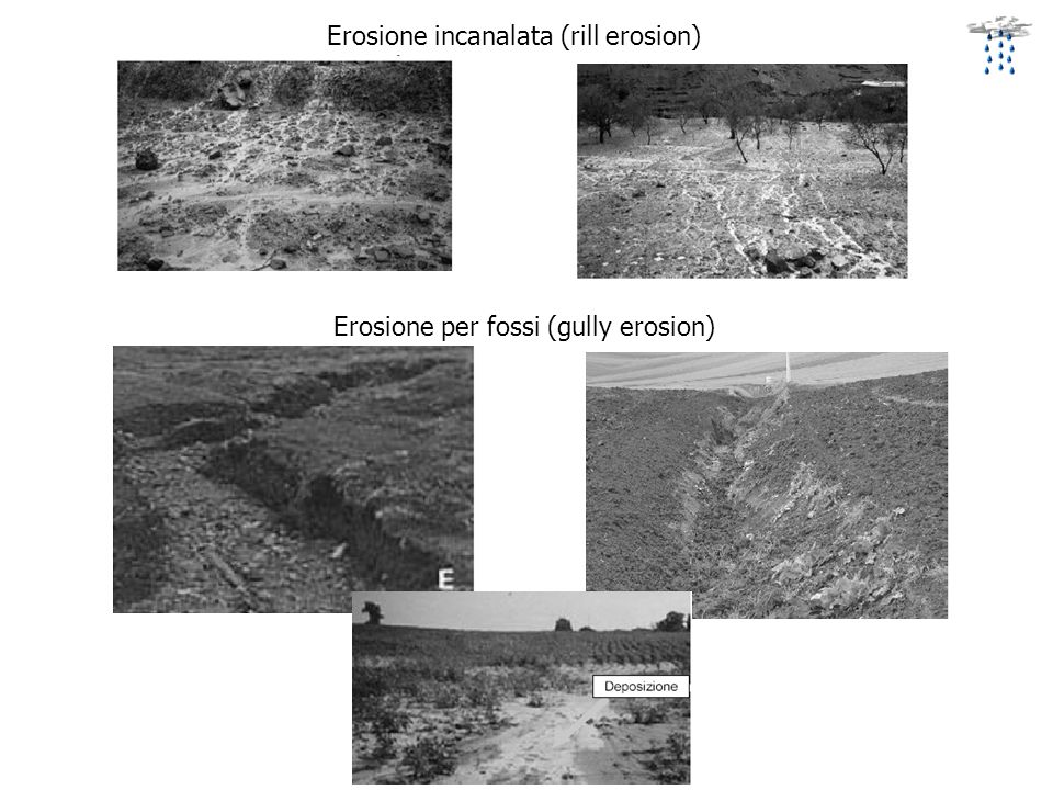 Erosione per fossi (gully erosion)