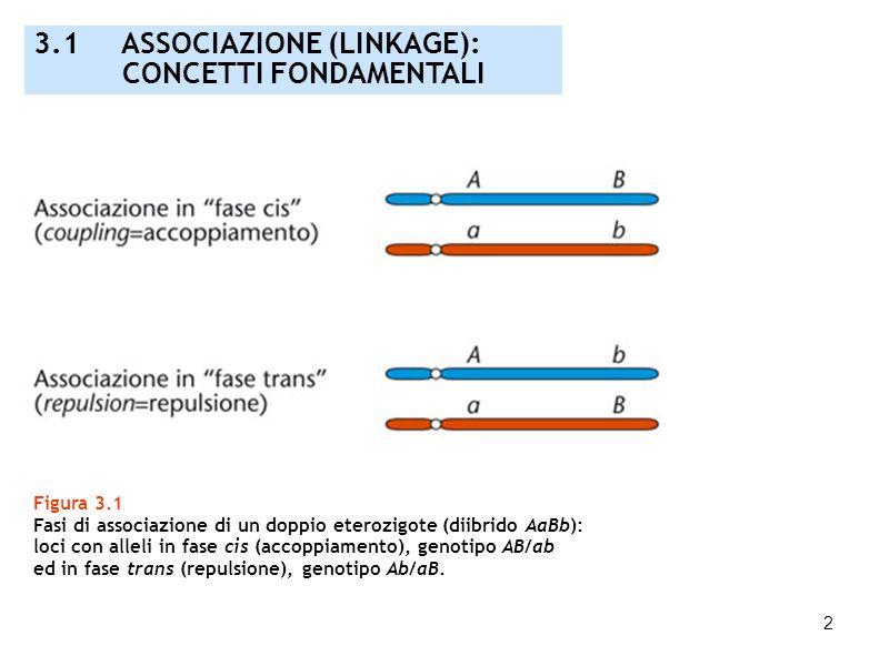 3.1 ASSOCIAZIONE (LINKAGE): CONCETTI FONDAMENTALI