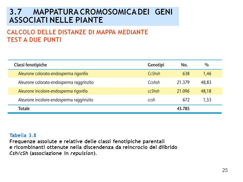 3.7 MAPPATURA CROMOSOMICA DEI GENI ASSOCIATI NELLE PIANTE