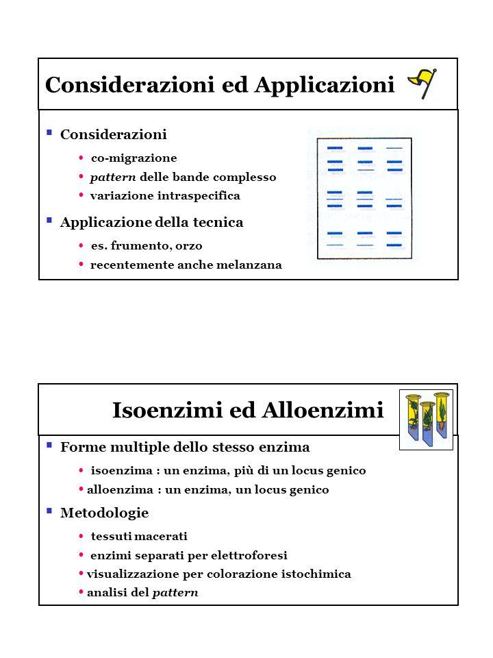 Isoenzimi ed Alloenzimi