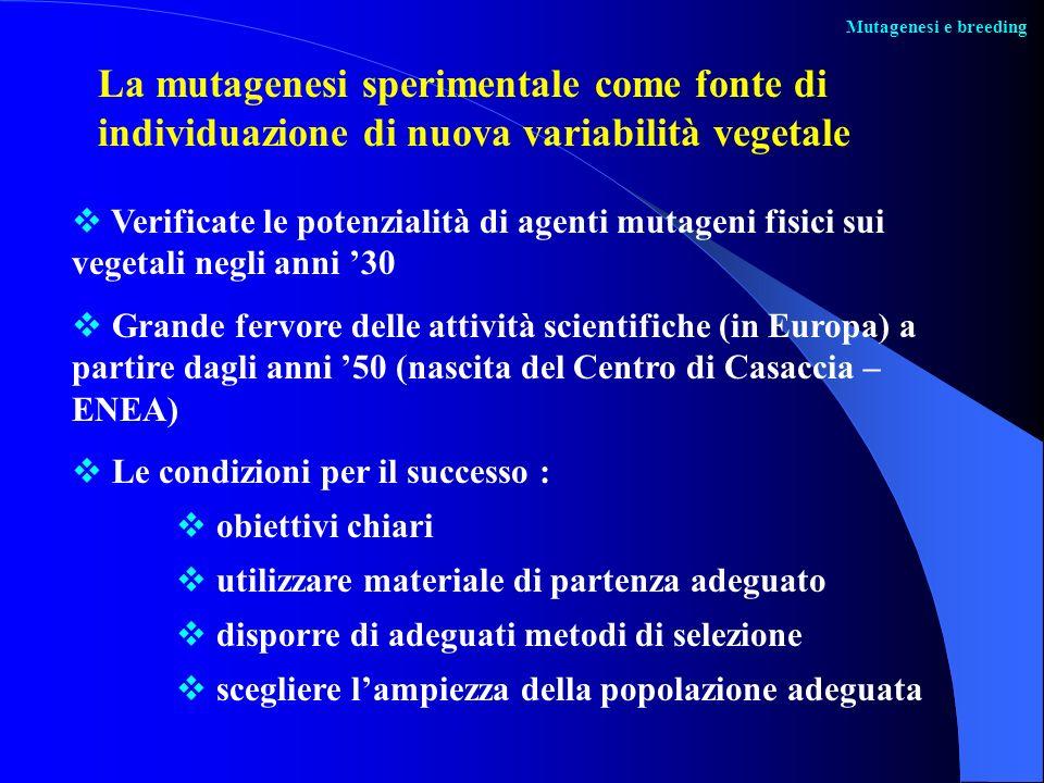 Mutagenesi e breedingLa mutagenesi sperimentale come fonte di individuazione di nuova variabilità vegetale.
