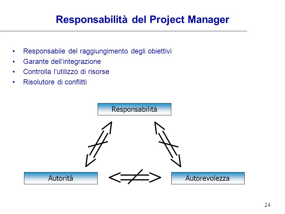 Responsabilità del Project Manager