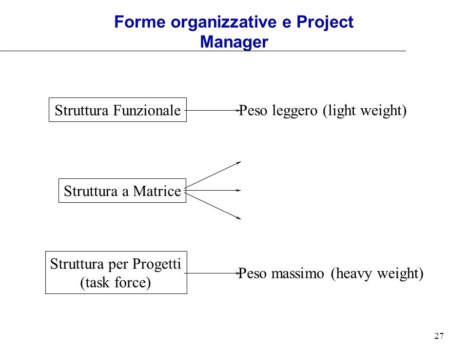 Forme organizzative e Project Manager
