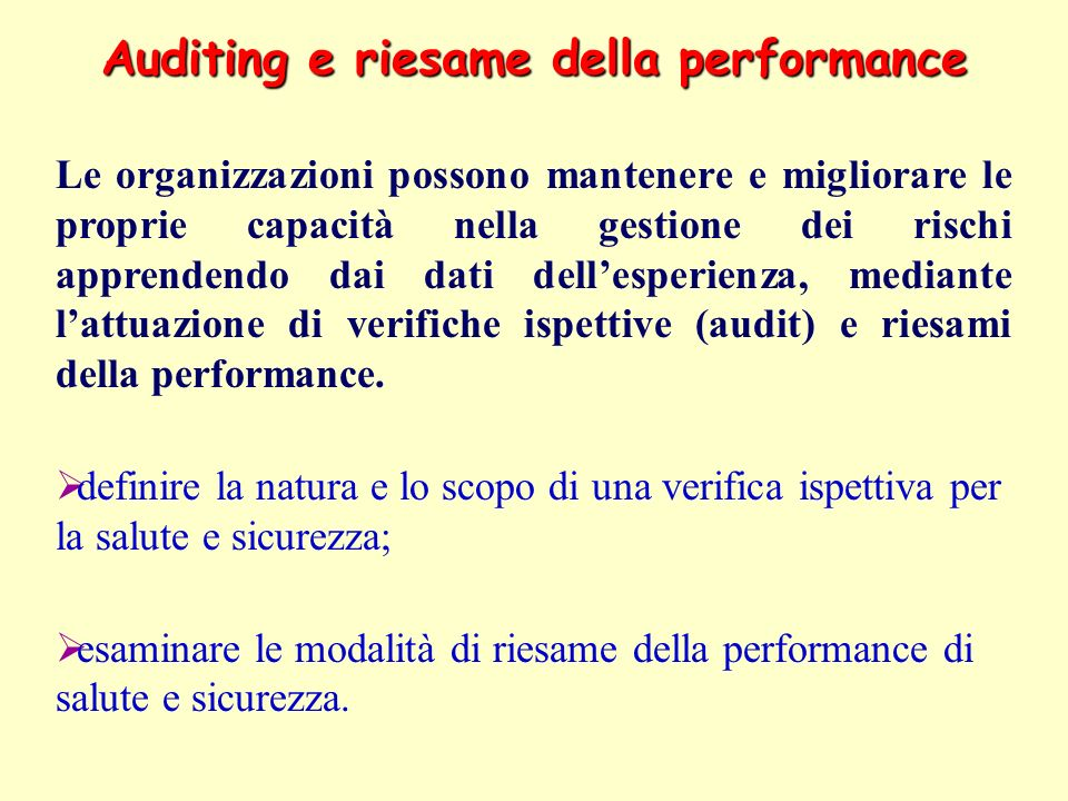 Auditing e riesame della performance