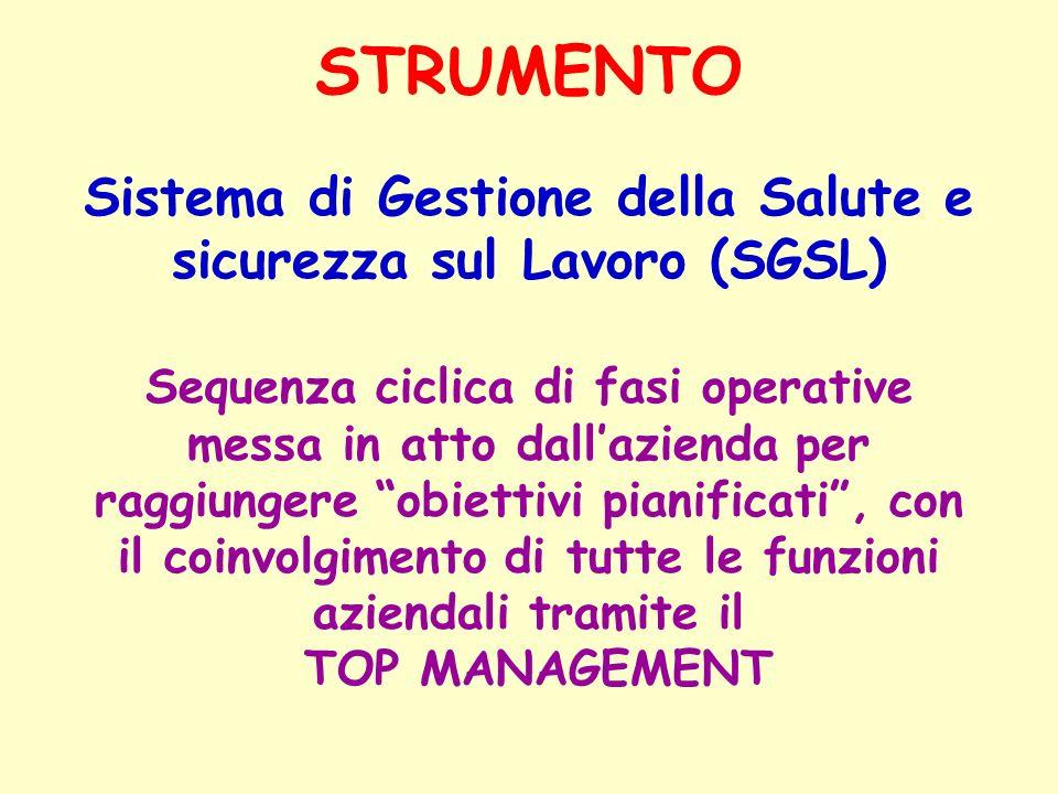 Sistema di Gestione della Salute e sicurezza sul Lavoro (SGSL)