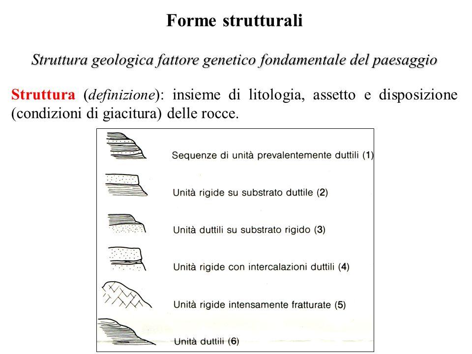 Struttura geologica fattore genetico fondamentale del paesaggio