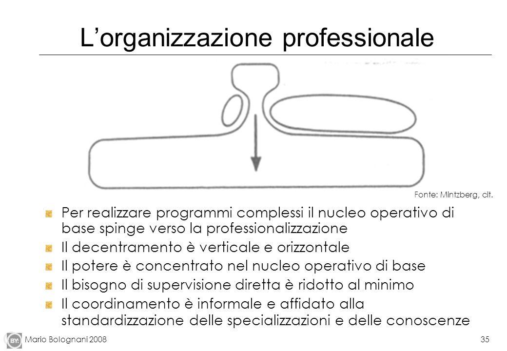 L'organizzazione professionale