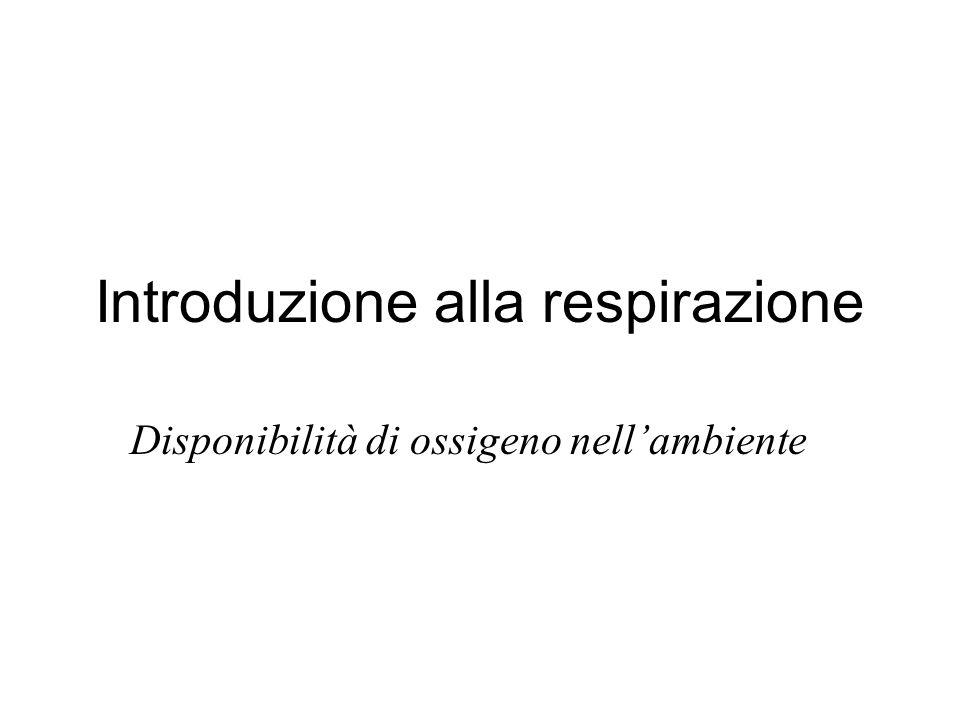 Introduzione alla respirazione