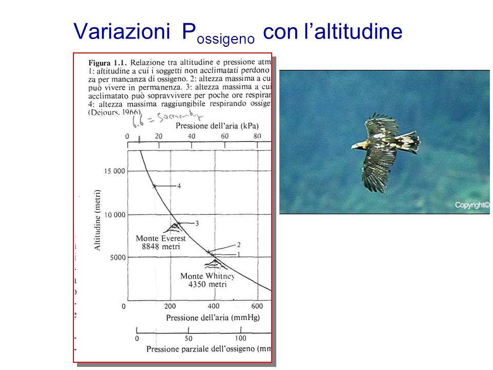 Variazioni Possigeno con l'altitudine