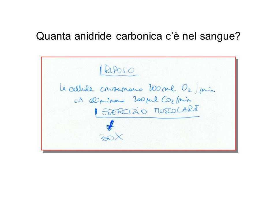 Quanta anidride carbonica c'è nel sangue