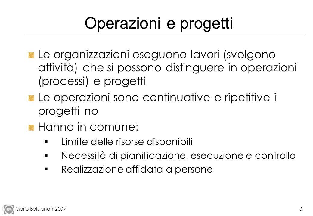 Operazioni e progettiLe organizzazioni eseguono lavori (svolgono attività) che si possono distinguere in operazioni (processi) e progetti.
