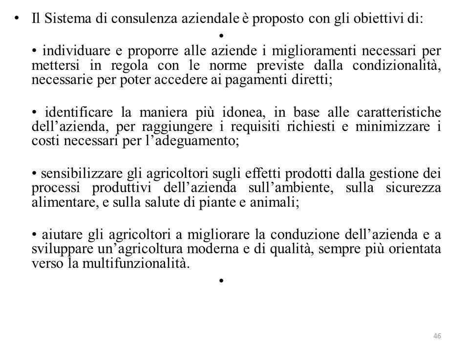 Il Sistema di consulenza aziendale è proposto con gli obiettivi di: