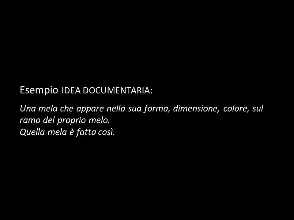 Esempio IDEA DOCUMENTARIA: