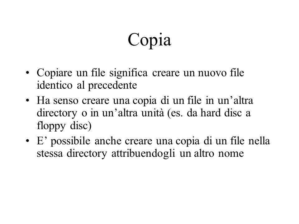 Copia Copiare un file significa creare un nuovo file identico al precedente.