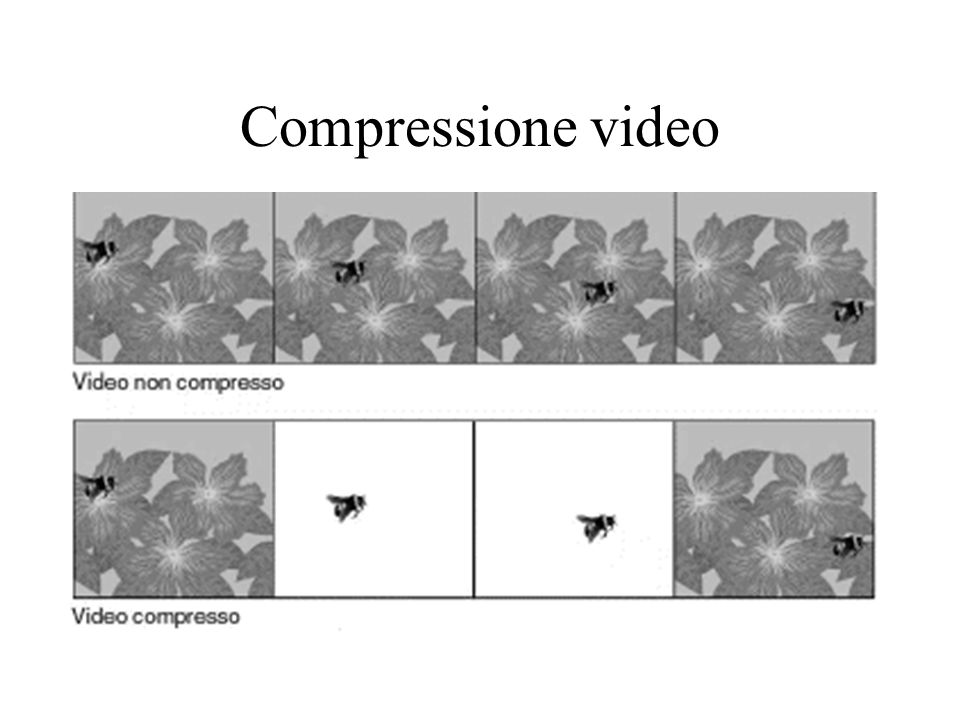 Compressione video