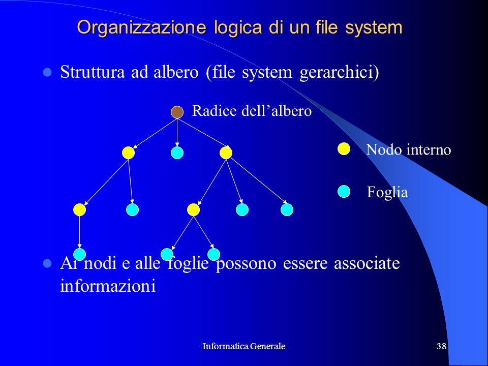 Organizzazione logica di un file system