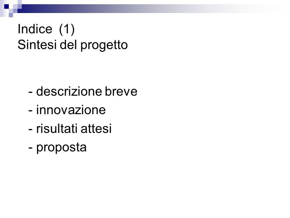 Indice (1) Sintesi del progetto