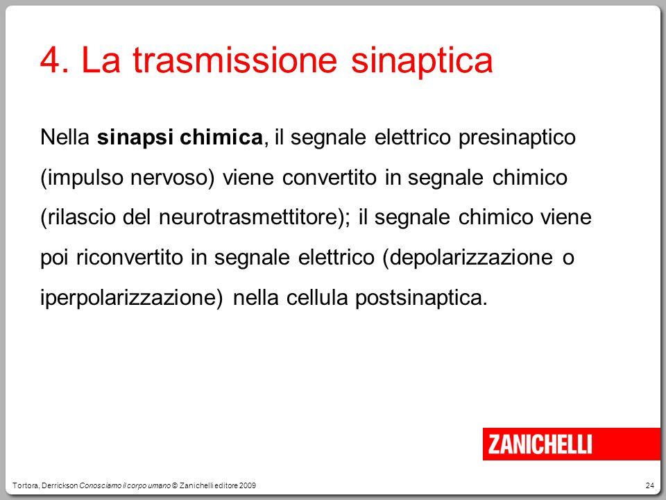 4. La trasmissione sinaptica