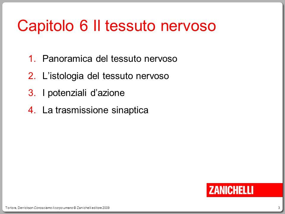Capitolo 6 Il tessuto nervoso