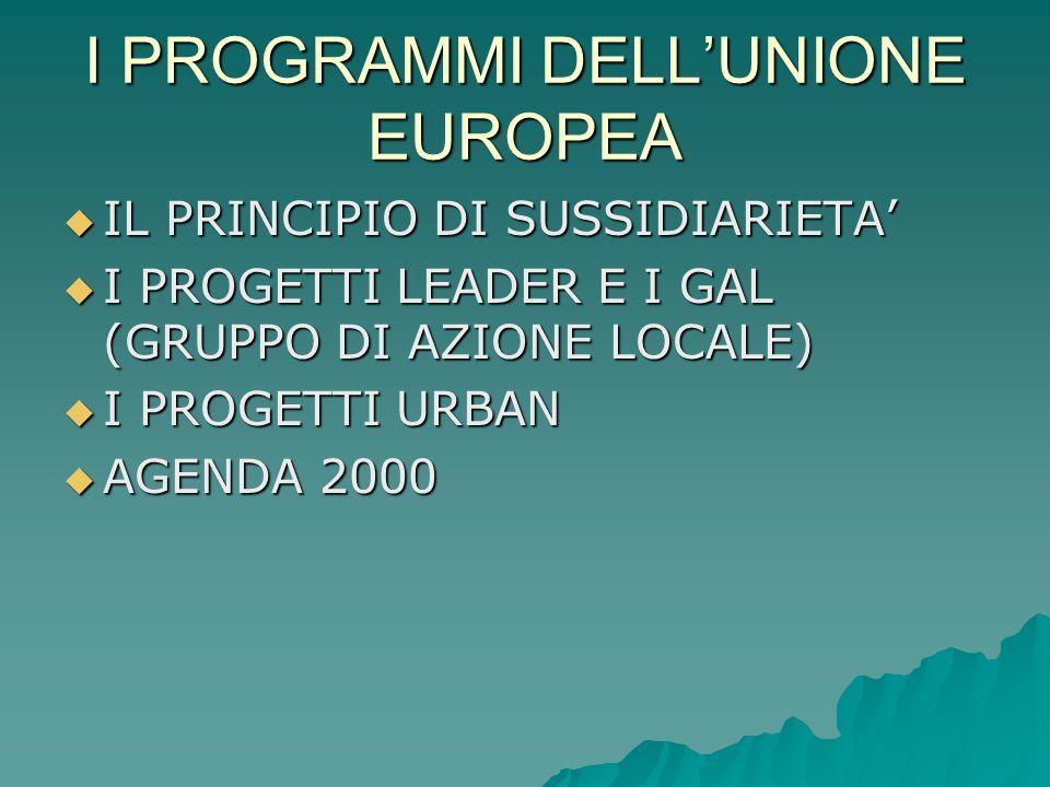 I PROGRAMMI DELL'UNIONE EUROPEA