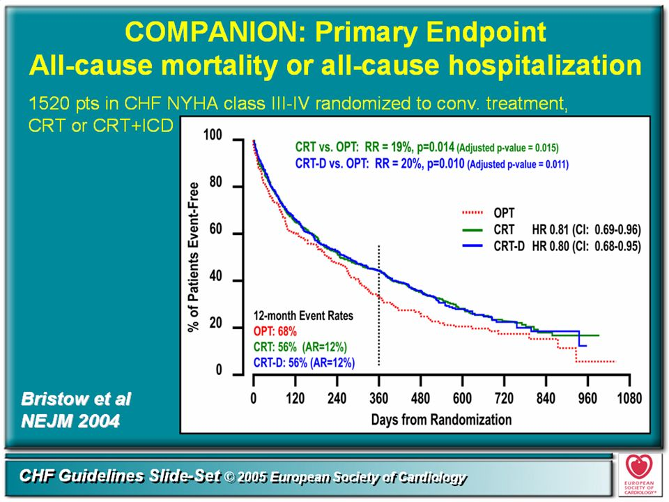 Compared to OPT alone, CRT-treated patients had a 20% lower risk (HR 0