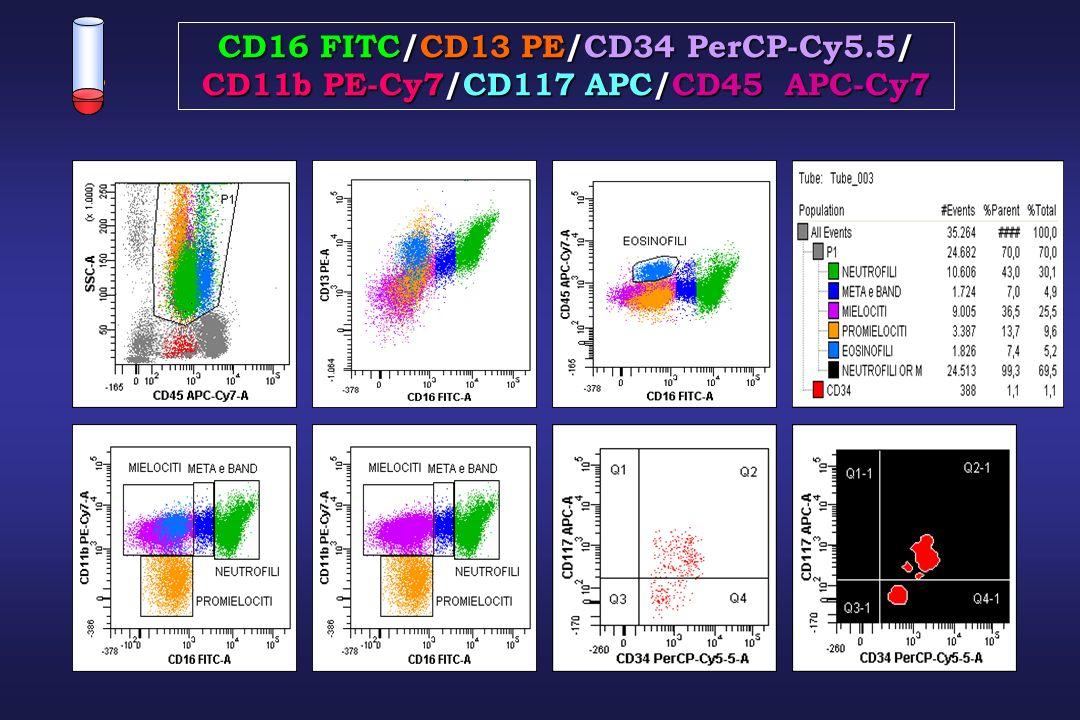 CD16 FITC/CD13 PE/CD34 PerCP-Cy5.5/